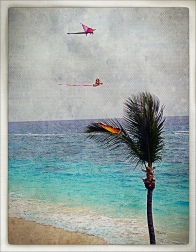 The original was dull but I used PhotoToaster to create this vintage hand-painted postcard effect.